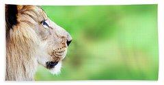 African Lion Face Closeup Web Banner Hand Towel by Susan Schmitz