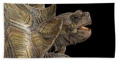 African Spurred Tortoise Bath Towel