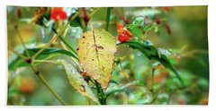 Hand Towel featuring the photograph After An Autumn Rain by Kerri Farley