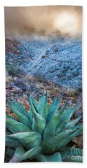 Agave Winter Hand Towel