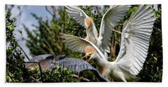 Aggression Between Cattle Egrets And Tricolored Heron Bath Towel