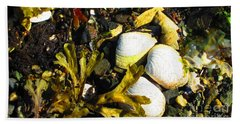 Alaska Clams Hand Towel
