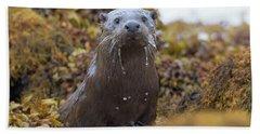 Alert Female Otter Bath Towel