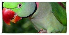 Alexandrine Parrot Feeding Hand Towel