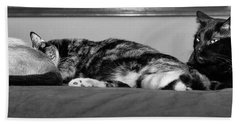 All Tuckered Out Bath Towel by Karen Slagle