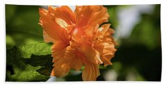 Allan Gardens Orange Hand Towel