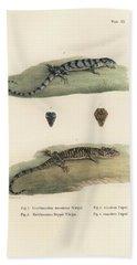 Alligator Lizards Bath Towel