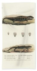 Alligator Lizards From Mexico Hand Towel
