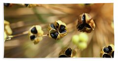 Allium Seed 1 Hand Towel by Jimmy Ostgard