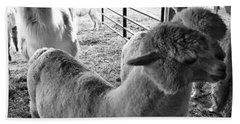 Alpaca Meeting  Bath Towel