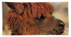 Alpaca Portrait Bath Towel by Sheila Brown