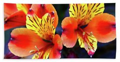 Bath Towel featuring the photograph Alstroemeria Indian Summer by Baggieoldboy