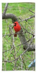 Always With Us -cardinals Hand Towel