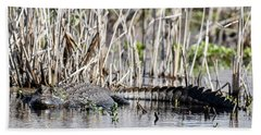 Hand Towel featuring the photograph American Alligator by Gary Wightman