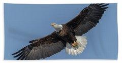 American Bald Eagle 2017-18 Hand Towel
