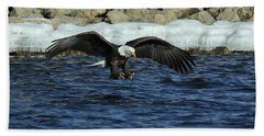 Bath Towel featuring the photograph American Bald Eagle Fishing On The Mississippi by Coby Cooper