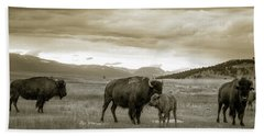 American Bison Calf And Cow Hand Towel