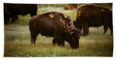 American Bison Grazing Bath Towel