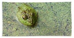 American Bullfrog Hand Towel