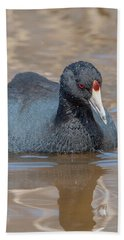American Coot Dmsb0140 Hand Towel
