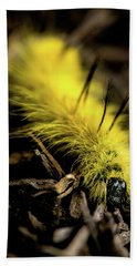 American Dagger Moth Caterpillar Bath Towel