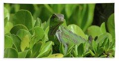 American Iguana Creeping Through A Bush Hand Towel by DejaVu Designs