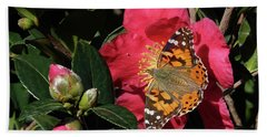 American Painted Lady On Camelia Hand Towel