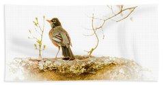 American Robin In Spring Bath Towel by Brian Caldwell