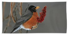 American Robin On Sumac Bath Towel