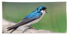 Hand Towel featuring the photograph American Tree Swallow by Debbie Stahre