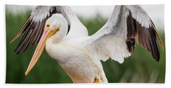 American White Pelican Perched Hand Towel by Ricky L Jones