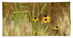 Among The Wheat 1 Hand Towel by Jimmy Ostgard
