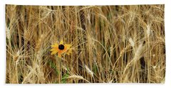 Among The Wheat 2 Hand Towel by Jimmy Ostgard