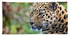 Amur Leopard Portrait Bath Towel