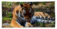Bath Towel featuring the mixed media Amur Tiger 2 by Angelina Vick