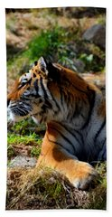 Hand Towel featuring the mixed media Amur Tiger 9 by Angelina Vick