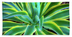 Bath Towel featuring the photograph An Agave In Color  by D Davila
