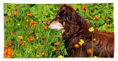 Bath Towel featuring the photograph An Aussie's Thoughtful Moment by Debbie Oppermann