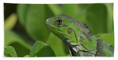 An Up Close Look At A Green Iguana Hand Towel by DejaVu Designs