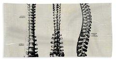 Anatomical Spine Medical Art Hand Towel