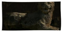 Ancient Lion - Nocisia  Hand Towel by Jim Vance