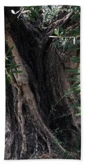 Ancient Old Olive Tree Spain Hand Towel