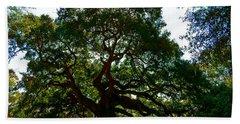 Angel Oak Tree 2004 Bath Towel