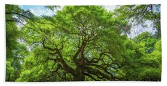 Angel Oak Tree In South Carolina  Bath Towel