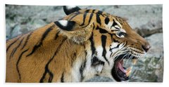Angry Tiger Hand Towel by John Black
