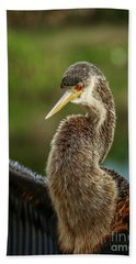 Anhinga Close-up #2 Bath Towel