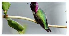 Anna's Hummingbird Hand Towel