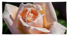 Another Beautiful Pink Rose Hand Towel