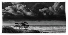 Hand Towel featuring the photograph Another Day At Kalaloch Beach by Dan Mihai