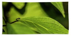 Bath Towel featuring the photograph Ant Life by JT Lewis